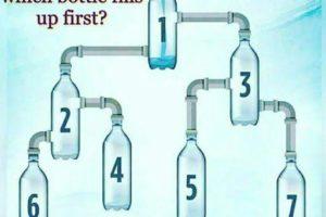 Which-Bottle-Fills-Up-First-EduFlex.Info
